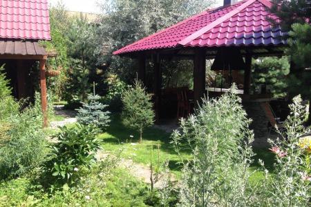 Гостевой дом Lake House, Иогач, Телецкое, Горный Алтай 03