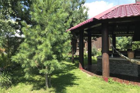 Гостевой дом Lake House, Иогач, Телецкое, Горный Алтай 10